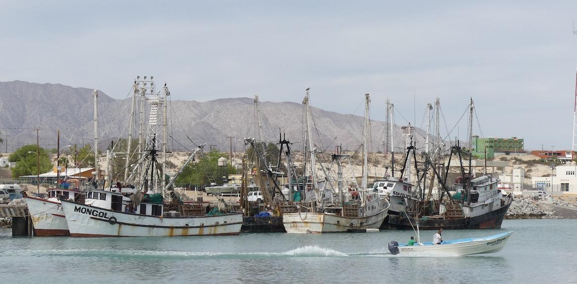 San-Felipe-port-1-copy