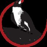 oxpecker-logo