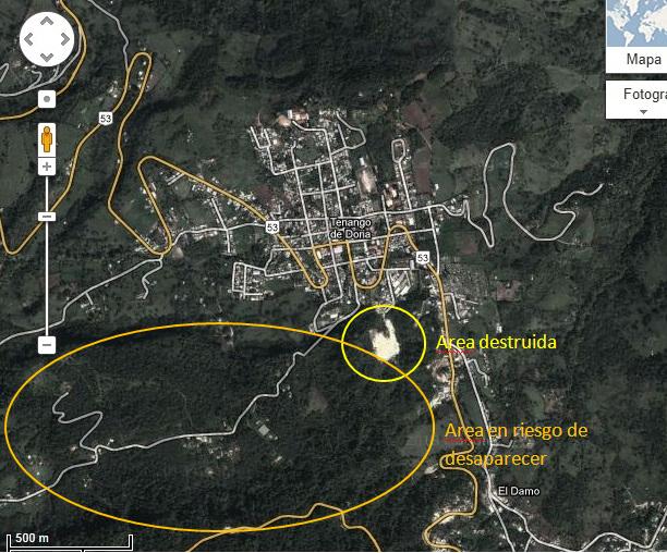 Bosque-El-Gosco